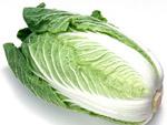 吃白菜1周瘦身4公斤