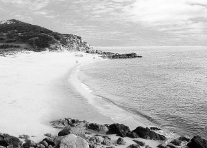 福建最美海岛之一 长乐东洛岛1.16亿出让