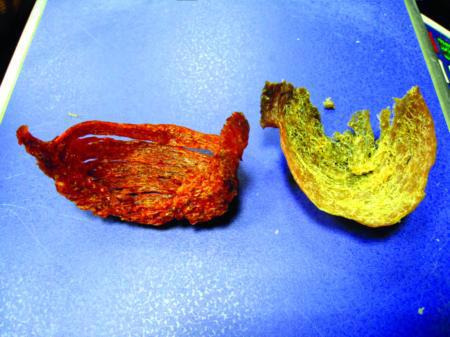 鸟粪苏打水熏出所谓血燕 揭秘燕窝造假过程(组图)
