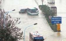 公交车和汽车瘫痪在水里