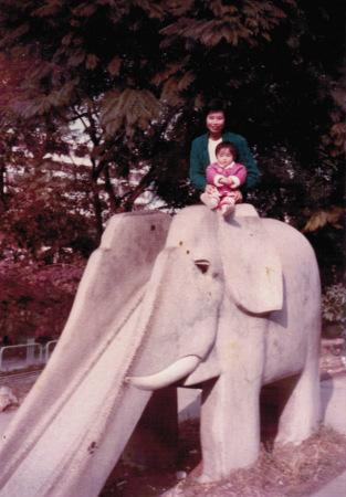 中山公园的大石象滑梯