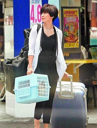 贾静雯日前拍齐秦新歌MV,提着大行李箱与猫笼入镜。 来源:台湾《苹果日报》
