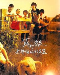 无以伦比的美丽(2007)