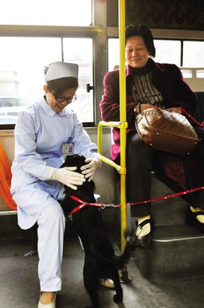经过一番折腾,病人好了,小狗也和医生玩了起来