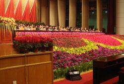 会议现场花团锦簇