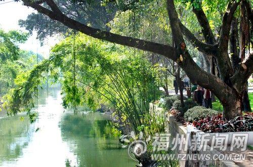 内河两边树木葱郁,芳草吐绿