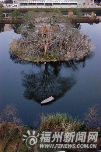 湖心岛全景