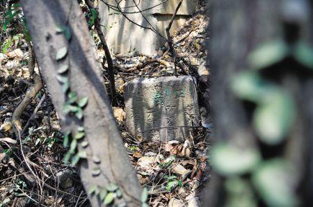 高先生在山上发现的墓葬