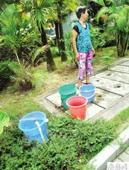 绿化带提水上楼可不轻松