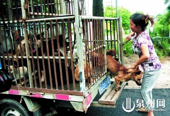 一位居民从铁笼内把自家养的狗放了出来