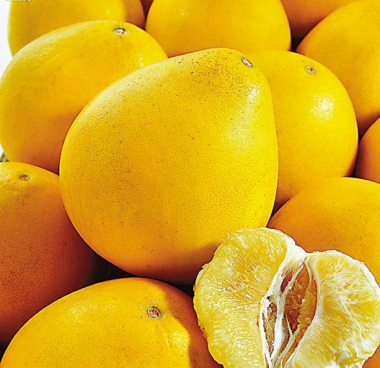 秋季服药期间忌食用柚子