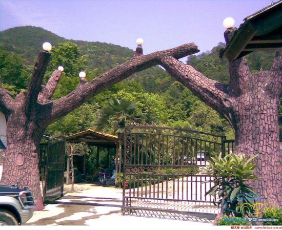 龙岩东肖森林公园十大奇观_城市频道