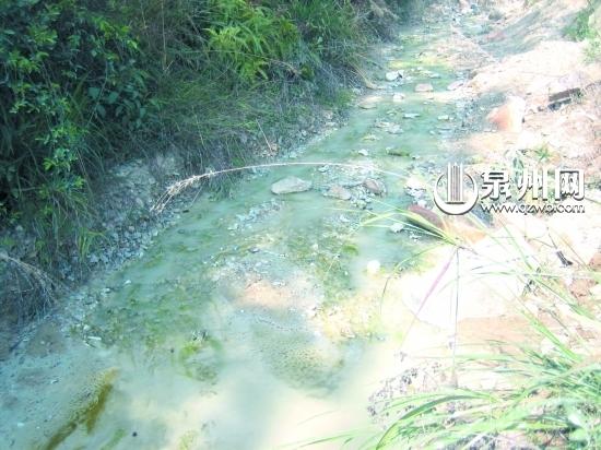泉州洛江罗溪镇后溪污染严重 溪水变白根源何在(组图)