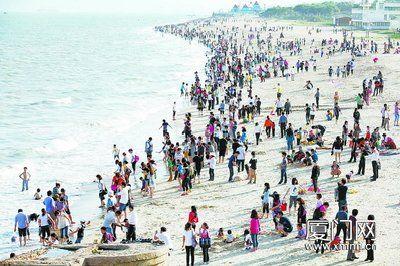 昨日下午,环岛路海边游玩的人一下子多了起来。(本报记者 陈立新 摄