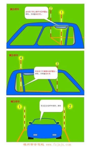 标准停车步骤图解