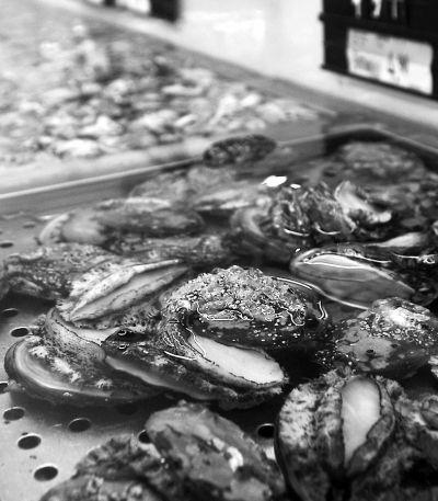 榕城鲍鱼市场供应、销售均比较稳定