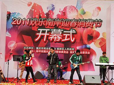 2011南岸迎春消费节