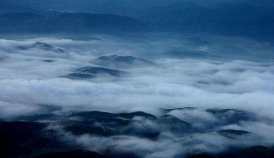 雾气森林高清桌面背景