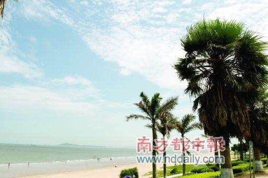 厦门环岛路,海滩,椰子树,蓝天,白云