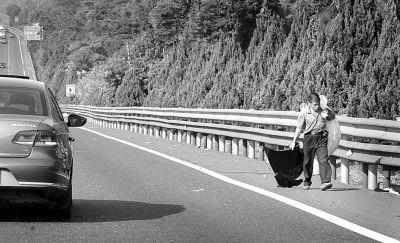 有人在高速路上捡瓶子