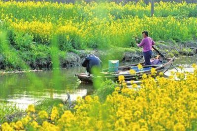 阳澄湖、太湖