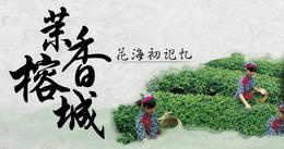 茉香榕城―花海初记忆