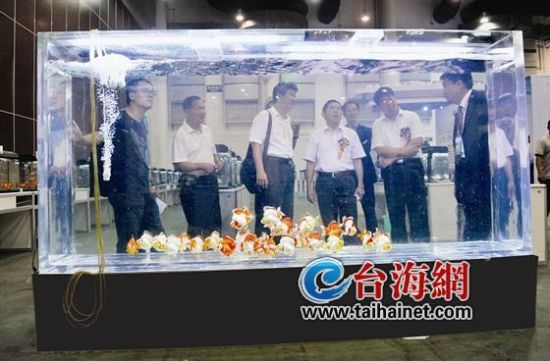 ▲福建最大的單體亞克力魚缸