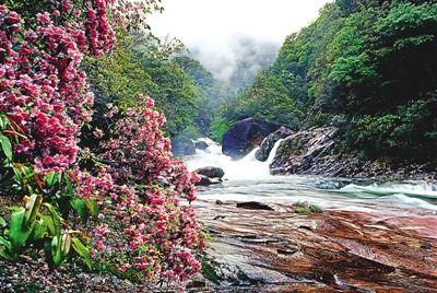 景色怡人的武夷山大安源景区