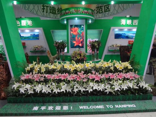 百合,让南平更美丽――第十四届漳州花卉博览会剪影