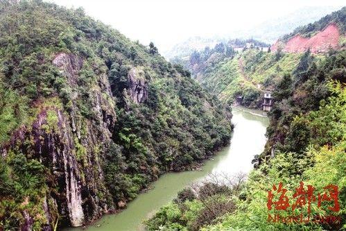 涓涓细流在山下汇成小河,向东海奔去。多日大雨过后,河水略显混浊