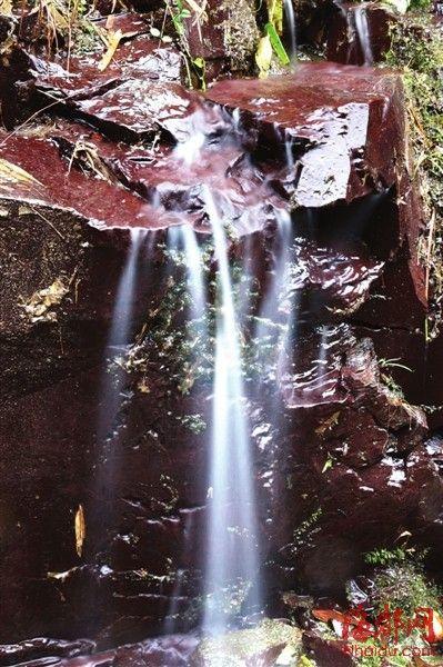 建宁严峰山中,这脉含着温润而来的细流,就是闽江的源头