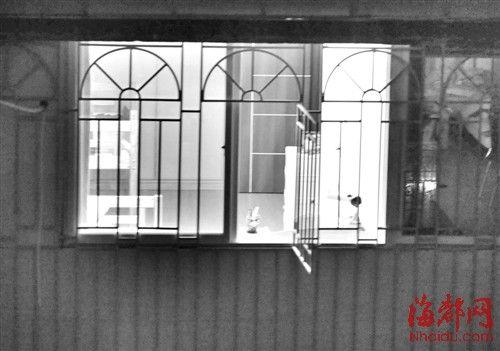 7楼的防盗窗户敞开着