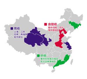 《2012中国肿瘤登记年报》中数据显示的地域特征。黄劲超 图