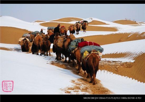 穿越塔克拉玛沙漠