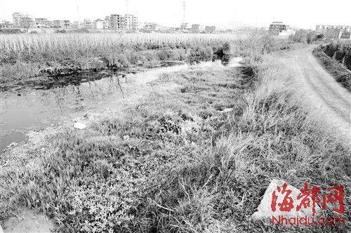 莆田:六岁女孩被亲生母推入河沟 双手还被绑着