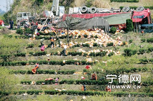 村民将散落在地的饮品一箱箱搬往路段旁的卡车上。