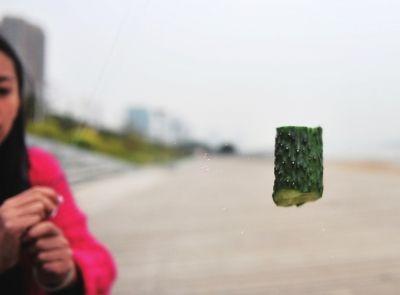福州实验验证风筝线威力 可割断黄瓜切开生肉