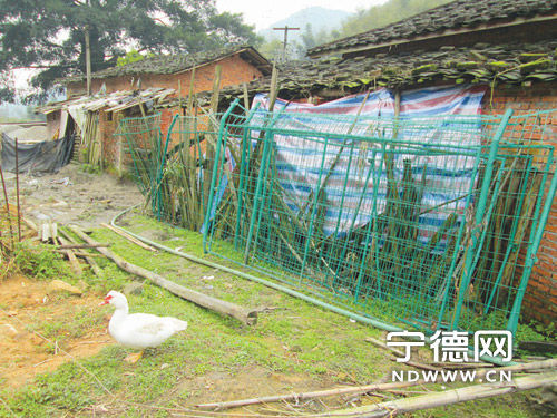 水库防护栏被私自拆卸,随意地堆放在一村民家的墙边。