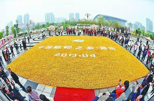 世界纪录协会现场认证,由8吨枇杷鲜果拼出、面积207.58平方米