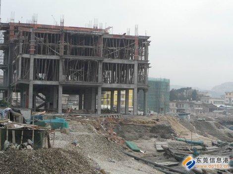 二层半楼自建房设计图展示