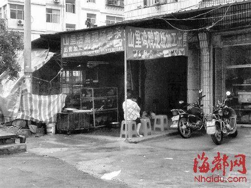 天九湾市场上,唯一营业的一家活禽店门庭冷落,无人问津