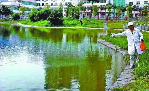 卫生消毒站工作人员对公共休闲场所、水域等地施洒灭蚊药