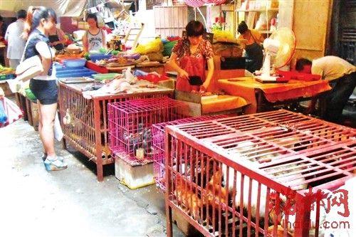 莆田家禽市场又开张了,销量恢复到此前的三成