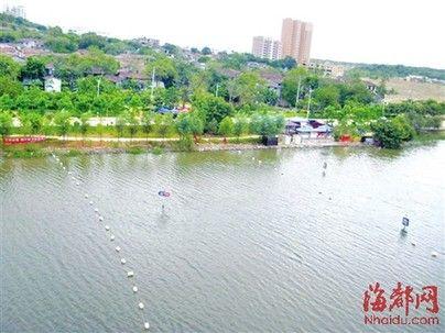 泗华溪水面上拉起一串串浮标