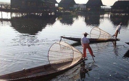 缅甸下蛊毒最厉害的地方用尸体养鱼