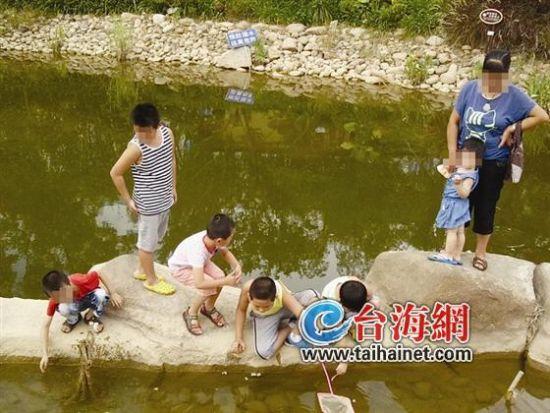 小孩扎堆池塘边抓鱼