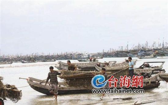 """▲""""天兔""""来袭,东山近3000艘渔船进港避风"""