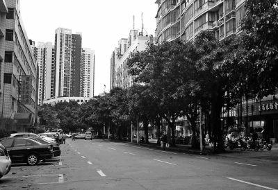"""交通西路(西二环路——白马中路路段)""""白改黑""""工程已完成"""
