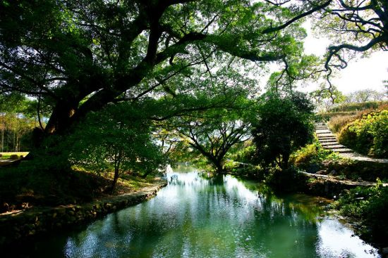 山重村里碧树绿水的云水间