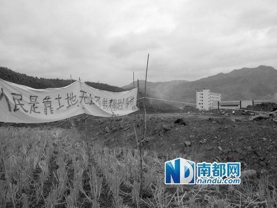 大红村源尾小组村外,部分农田被征收,未被征收的农田打起了标语。南都记者 张少杰 摄